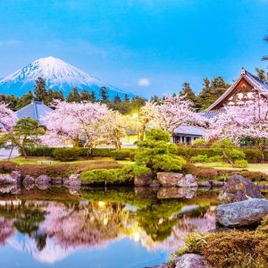 Book Mt Fuji Famous Food Tour with Transportation