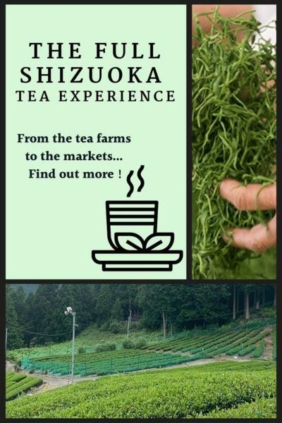 tea farm to market